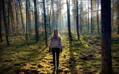 Blog: vrijheid